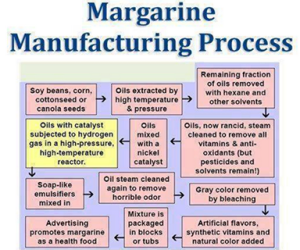 food - MARGARINE DO NOT EAT diagram how made
